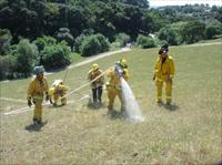 Firefighters working for the Department